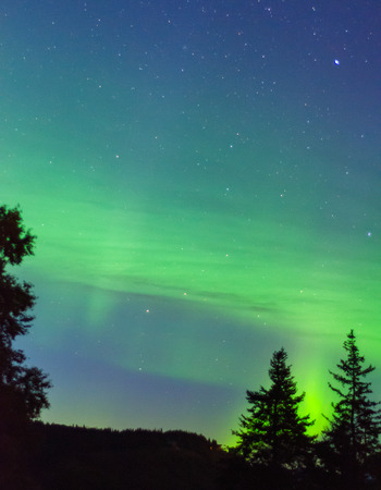 shadowed: An aurora breaks up into green bands over a shadowed Alaskan forest.