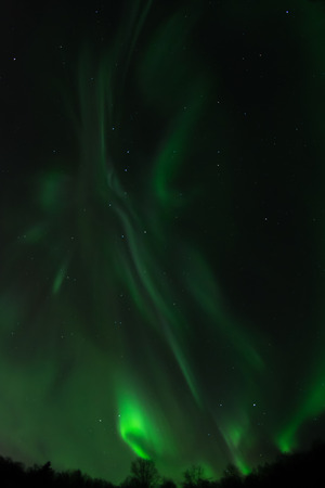 ionosphere: A green aurora twists into loops and swirls in the Alaskan night sky.