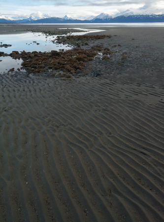 A stream runs into the distance as water continues to flow to the sea at low tide.