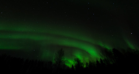 treeline: Like a stone thrown into a pond, an aurora spreads bands of light across the sky.