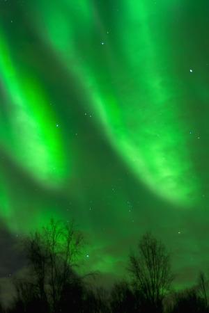 smears: An aurora smears green light across the sky.