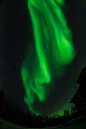 treeline: A green aurora swirls over the roof of a house.
