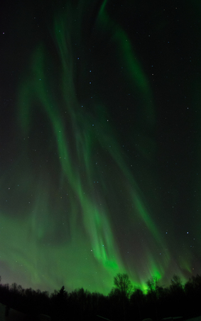 A bright aurora feds the night sky green filaments of softer green light.