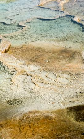 adn: piscinas de agua termales permiten amarilla del ADN de algas bronceado para crecer Foto de archivo