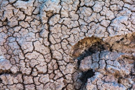 shrunken: Natural abstract patterns are provided by dried up mud Stock Photo