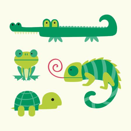 Vecteur de reptiles Illustration sur fond blanc Vecteurs