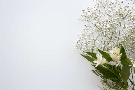 top view baby s breath white lilies flower white background. Resolution and high quality beautiful photo