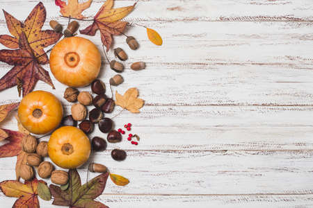 autumn leaves vegetables with copy space. Resolution and high quality beautiful photo Reklamní fotografie
