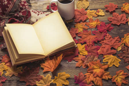 book blanket near coffee leaves. Resolution and high quality beautiful photo