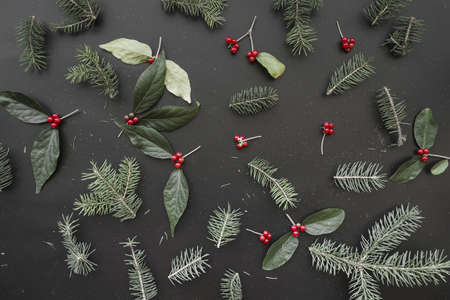 christmas composition of green branches. Resolution and high quality beautiful photo