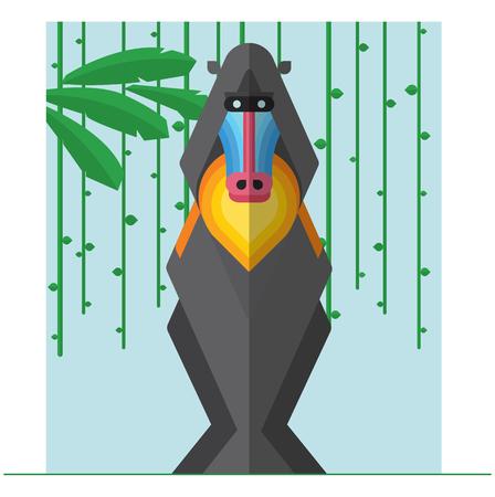 endangered species: illustration of a mandrill. Illustration