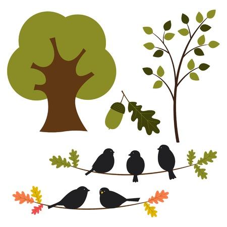 oak leaf: Tree and nature set