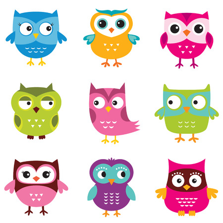 owl illustration: Cute owls set