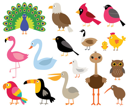 Cartoon vogels, geïsoleerde illustraties instellen