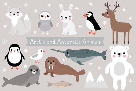 Arctic and Antarctic animals, vector set