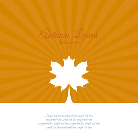fall leaves on white: Abstract Autumn background with some special objects