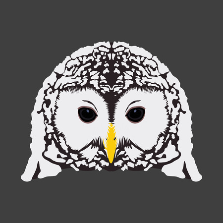 owl illustration: Isolated face of an owl, Vector illustration