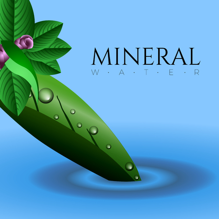 Mineral water graphic design with text, Vector illustration
