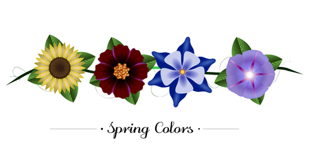 Set of colored flowers on a white background, Vector illustration Illustration