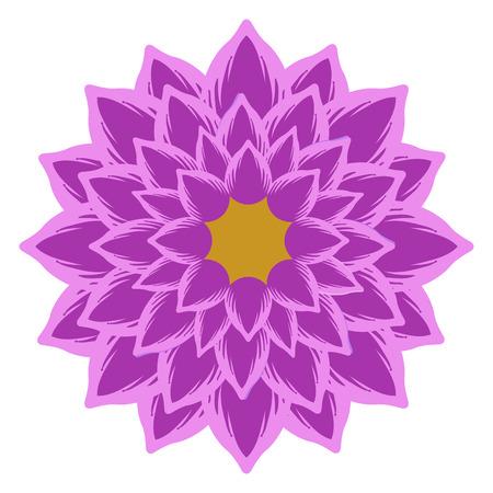 Isolated detailed flower on a white background, Vector illustration Illustration