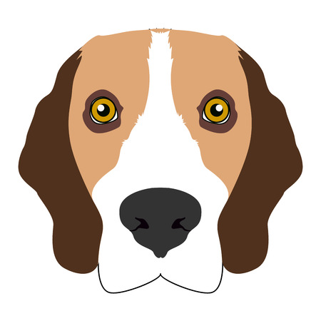 Isolated beagle face icon on a white background, vector illustration
