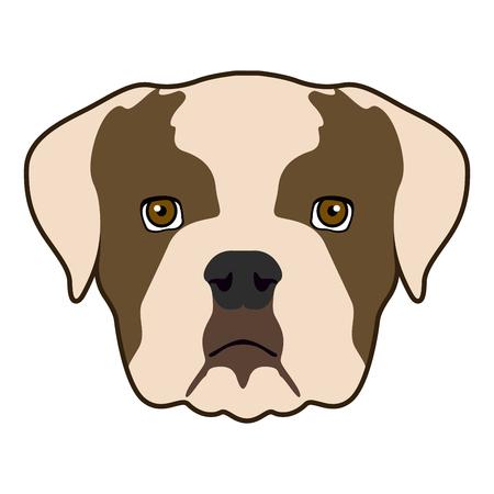 Icono de cara de bulldog aislado sobre un fondo blanco, ilustración vectorial