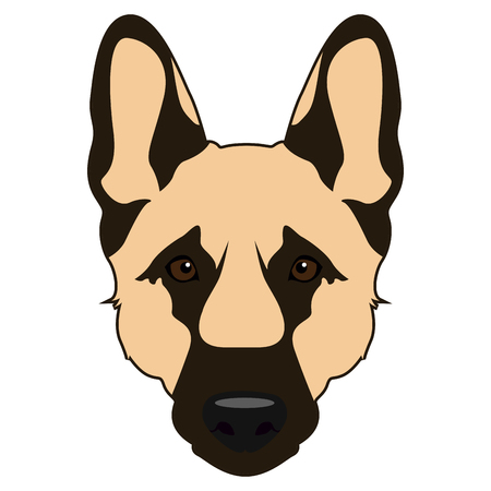 shepard: Isolated german shepard face icon on a white background, vector illustration