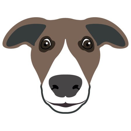 Isolated greyhound face icon on a white background, vector illustration