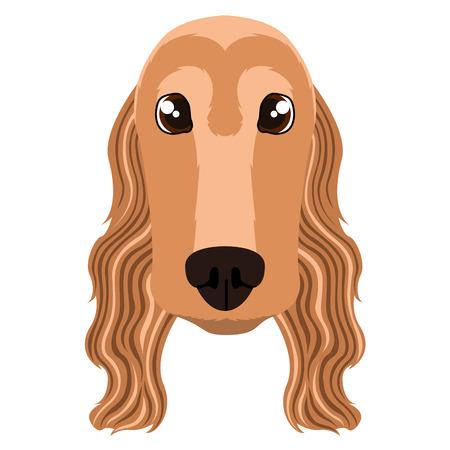 Cocker spaniel avatar