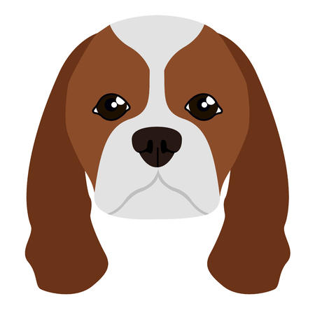 Cavalier king charles spaniel avatar Illustration