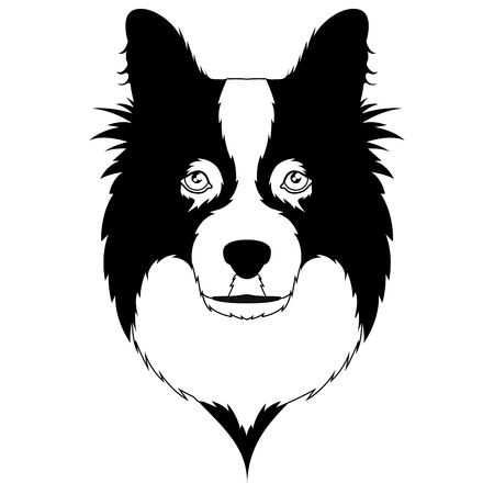 Silhouette of a border collie avatar