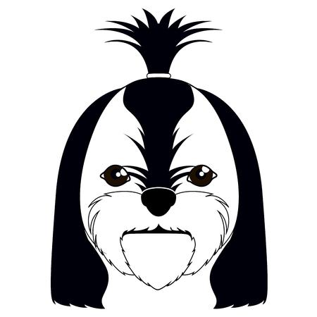 Silhouette of a shih tzu avatar Illustration
