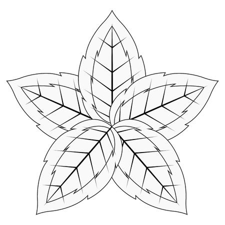 Colorful tropical leaf icon. Vector illustration design