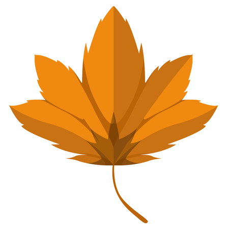 Isolated autumn leaf image. Vector illustration design