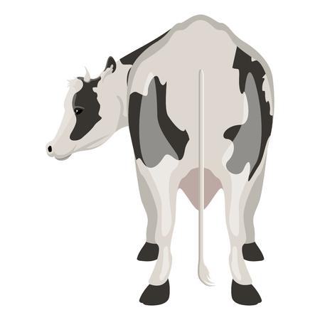 Rückansicht einer Kuh. Bauernhoftier. Vektorillustrationsdesign Vektorgrafik
