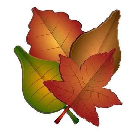 Set of autumn leaves 写真素材 - 136116430