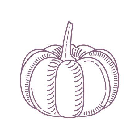 Sketch of a pumpkin 写真素材 - 136116434
