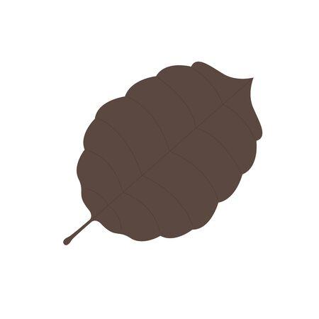 Isolated dry leaf. autumn season - Vector illustration