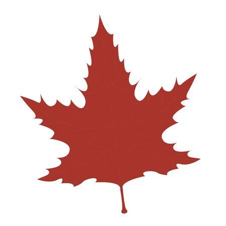 Hoja seca aislada. temporada de otoño - ilustración vectorial