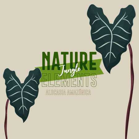 Green plant nature jungle