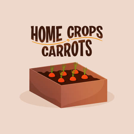 Home crop carrot in wood food health icon- Vector 向量圖像