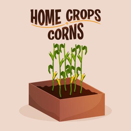 Home crop corn in wood food health icon- Vector 向量圖像