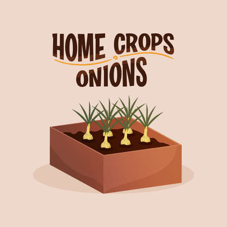Home crop onion in wood food health icon- Vector