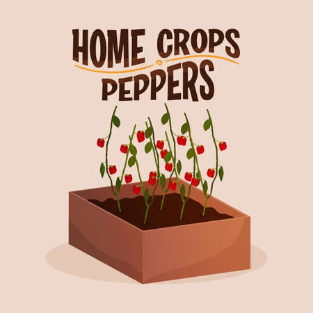 Home crop peppers in wood food health icon- Vector 向量圖像