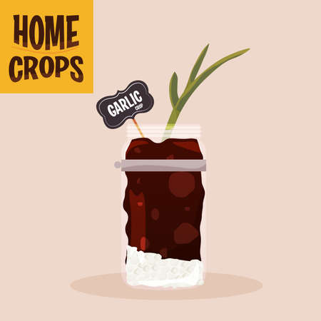 Home crop carrot in germinate food health icon- Vector