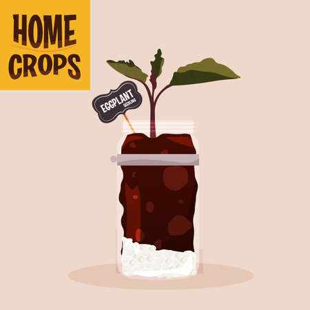 Home crop scallions in germinate food health icon- Vector