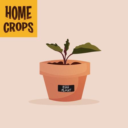 Home crop scallions in flowerpot food health icon- Vector 向量圖像