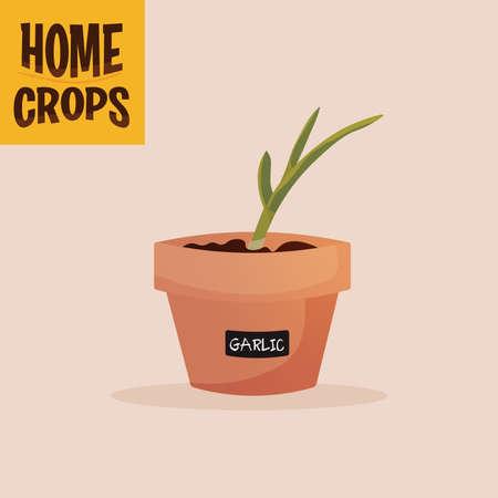 Home crop carrot in flowerpot food health icon- Vector