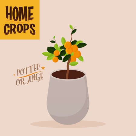 Home crop carrot in white flowerpot food health icon- Vector