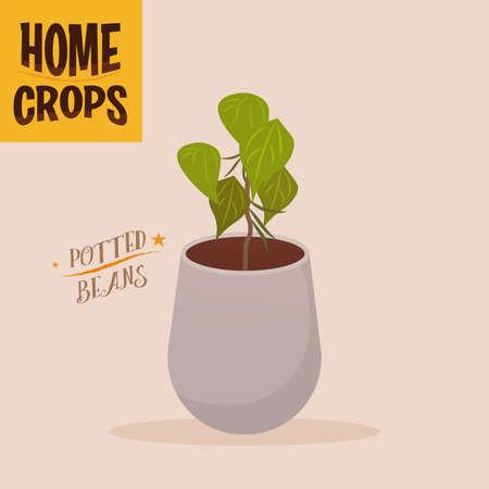 Home crop corn in white flowerpot food health icon- Vector